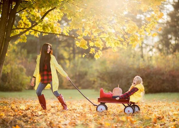 La mamá triguena de risa hermosa rueda a su bebé en una carretilla roja en parque del otoño.