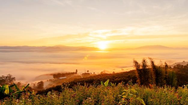 Mañana amanecer nubes y niebla sobre montaña