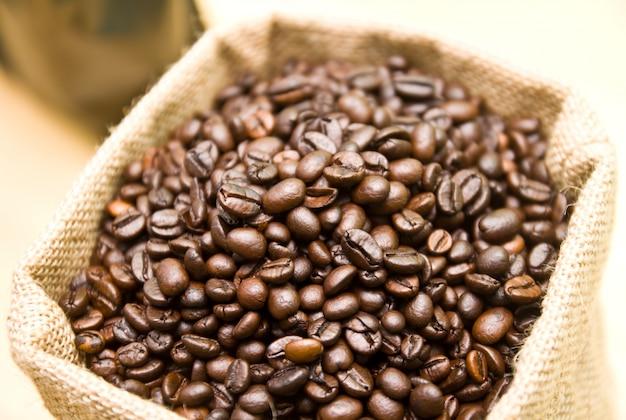 Mañana textura de semillas de frijol ingrediente