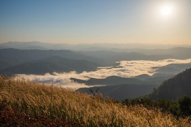 Mañana vista a la montaña con luz solar y niebla en invierno