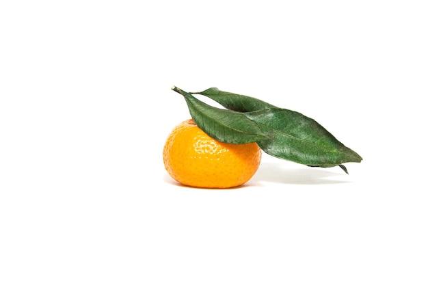 Mandarinas frescas y maduras con hojas verdes sobre un fondo blanco.
