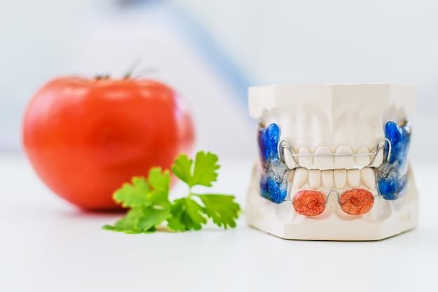 Las mandíbulas artificiales con una grapa se encuentran junto al tomate