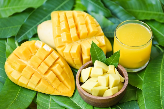 Mangos maduros dulces - vaso de jugo de mango con una rodaja de mango en hojas de mango del concepto de fruta de verano tropical de árbol