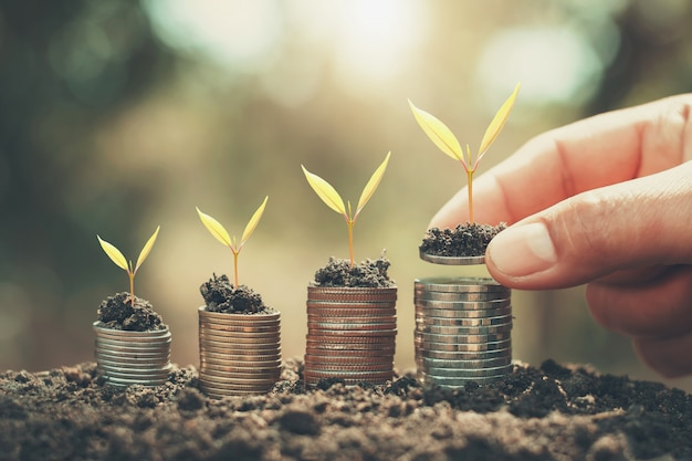 Mano ahorrando dinero y cultivando plantas jóvenes en monedas. concepto de contabilidad financiera
