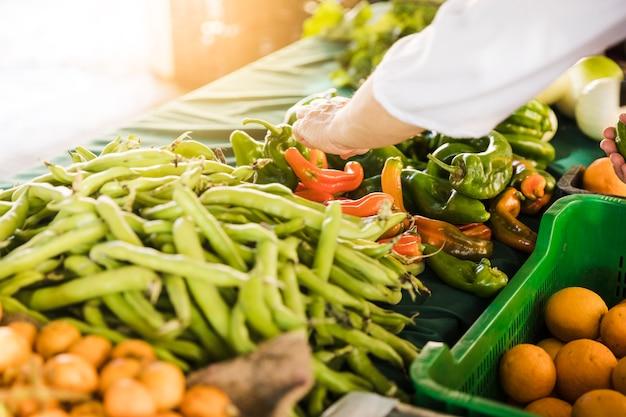 Mano del consumidor que elige verduras frescas en el mercado de la tienda de comestibles