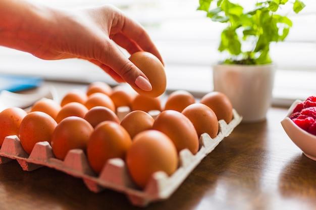 Mano de cultivo tomando huevo para pastelería