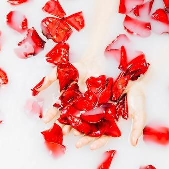 Mano de mujer con pétalos de flores rojas delicadas en baño de spa con leche