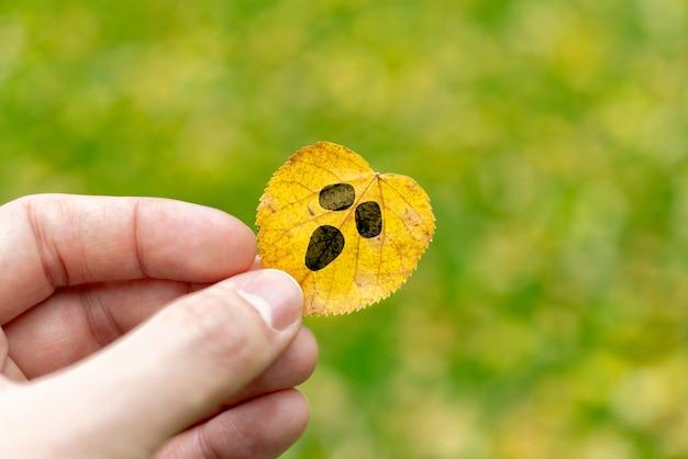 La mano con los dedos sostiene una cara alegre dibujada en una fiesta de halloween de hoja de otoño