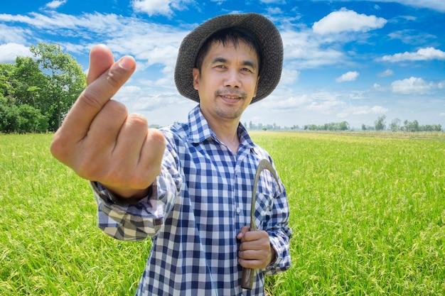 Mano feliz del granjero joven asiático hasta mini forma del corazón y sosteniendo la hoz en un campo verde del arroz y un cielo azul