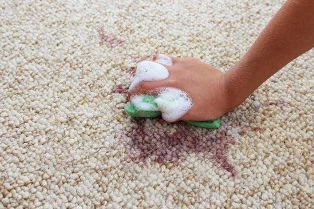 Mano femenina limpia la alfombra con una esponja y detergente.