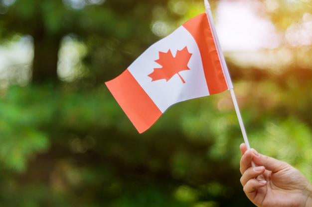 Mano femenina que sostiene la bandera canadiense para celebrar el día de fiesta del día de canadá