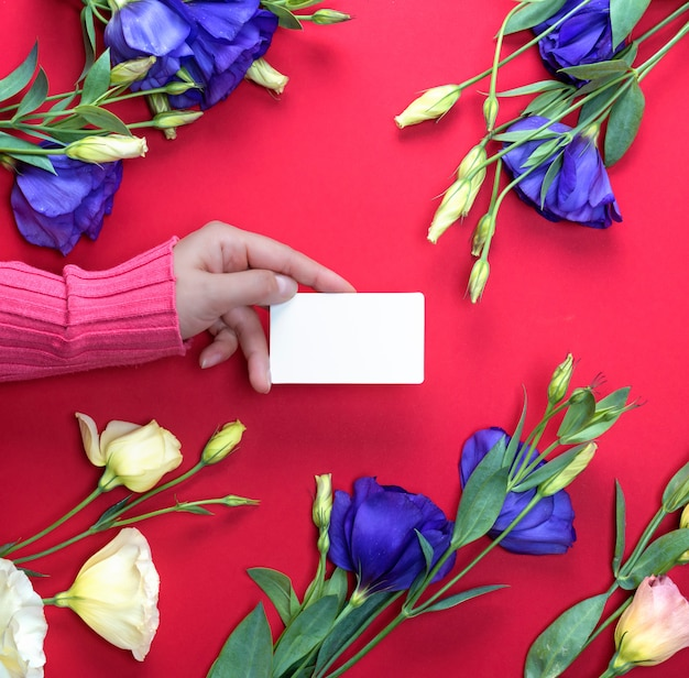 Mano femenina en suéter rosado que sostiene una tarjeta de visita en blanco del libro blanco
