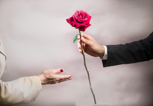 La mano de un hombre extiende una hermosa rosa a una mujer.