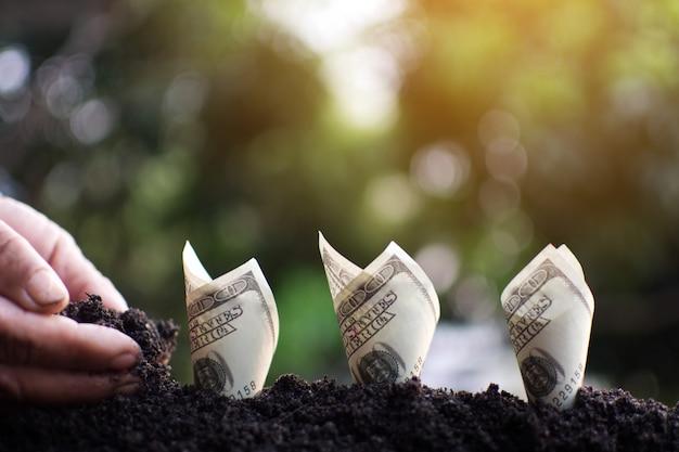 Mano humana plantando dinero para el éxito.