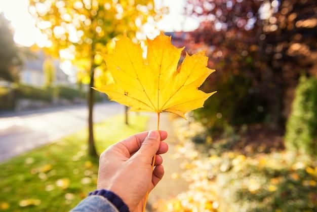 Mano humana sosteniendo la hoja de otoño