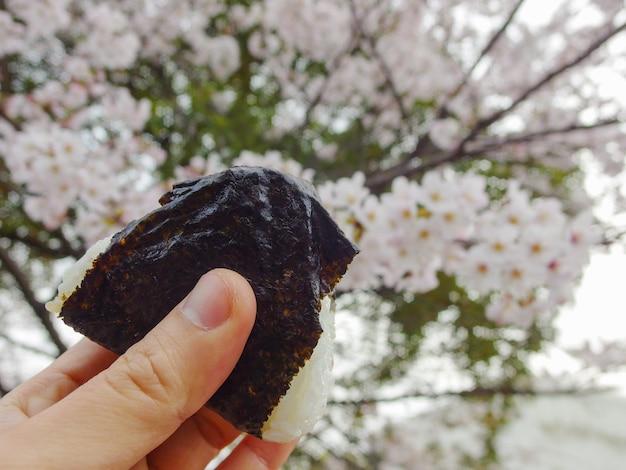 La mano humana sostiene una bola de arroz japonesa con árboles de sakura borrosos.