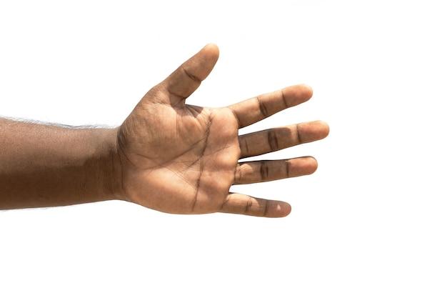 Mano izquierda masculina con cinco dedos cerca aislado sobre fondo blanco.
