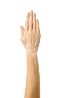 Mano levantada votando o alcanzando. mujer mano gesticular aislado en blanco