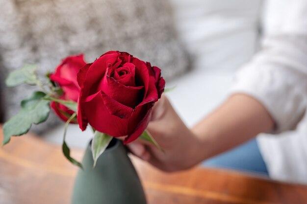 La mano de una mujer arreglando flores rosas rojas en un jarrón verde