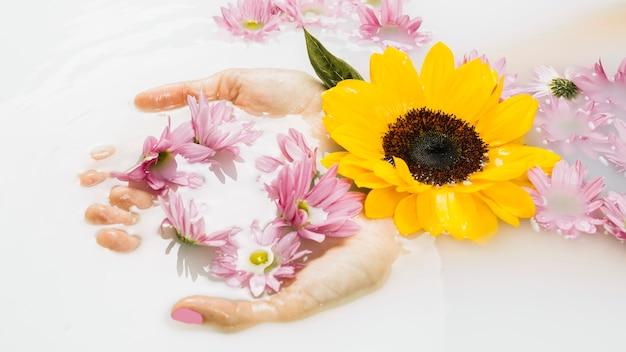 Mano de mujer con delicadas flores amarillas y rosadas en aguas claras