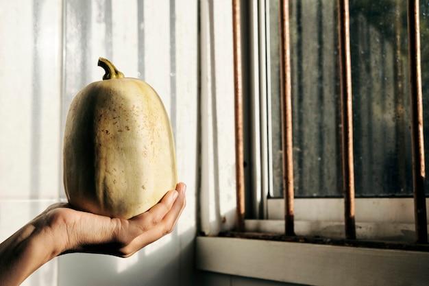 Mano de mujer sosteniendo una calabaza amarilla cerca de una ventana