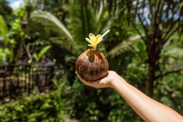 La mano de la mujer sostiene la bebida del coco con la flor amarilla en ella. verde selva