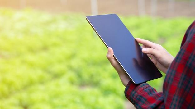 Mano de niña campesina asiática utilizando tableta móvil digital para comprobar ensalada de lechuga de roble verde fresco