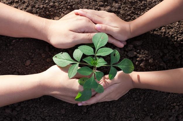 Mano de niño y padre plantar árbol joven en suelo negro juntos como concepto de salvar el mundo