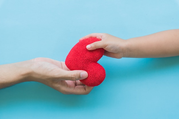 Mano del niño que da el corazón rojo al concepto del papá, de la familia, del amor y de la atención sanitaria.