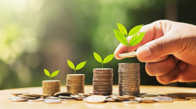 Mano poniendo monedas en pila con planta que crece en dinero. concepto de finanzas y contabilidad