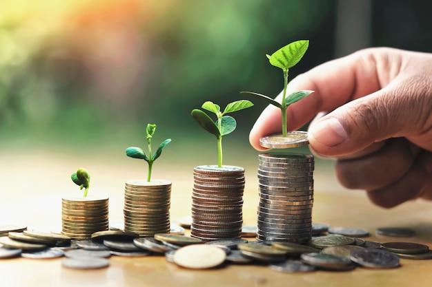 Mano poniendo monedas en la pila con planta que crece en dinero