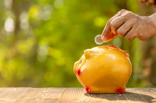 La mano puso la moneda a la hucha con el fondo verde de la falta de definición de la naturaleza. concepto de ahorro de dinero