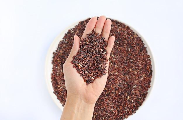 Mano que sostiene el arroz rojo del jazmín en la placa blanca contra el fondo blanco