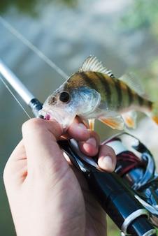 Mano que sostiene el pescado atrapado en el anzuelo