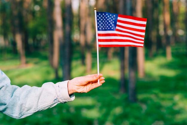 Mano sosteniendo la bandera de estados unidos