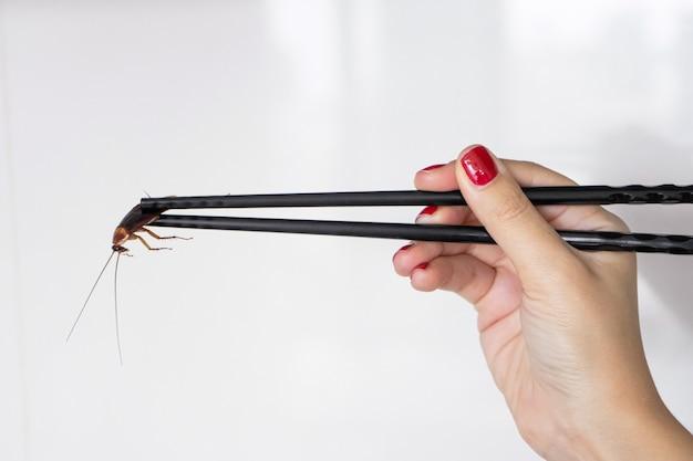 Mano sosteniendo una cucaracha con palillos chinos