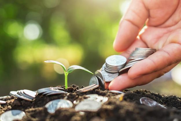 Mano sosteniendo dinero poniendo en tierra y crecimiento joven