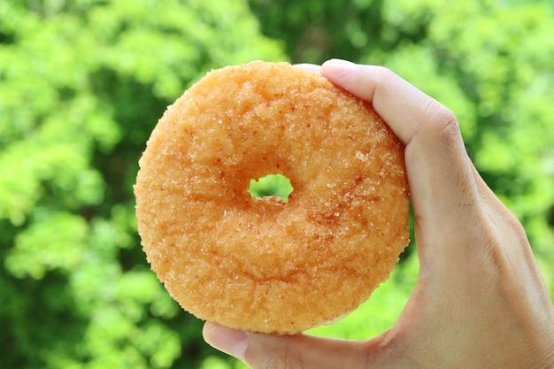 Mano sosteniendo una rosquilla de canela de azúcar con follaje verde borroso en segundo plano.