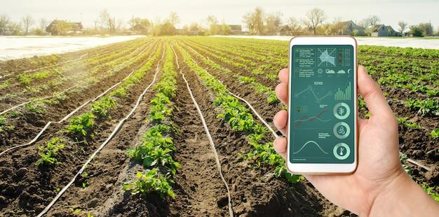 Una mano sostiene un teléfono inteligente con gestión de sistemas de riego y análisis de datos.