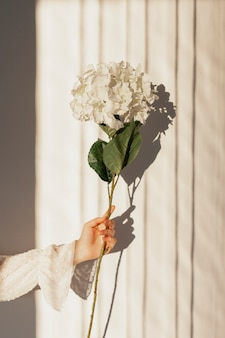 Mano sujetando flores naturales