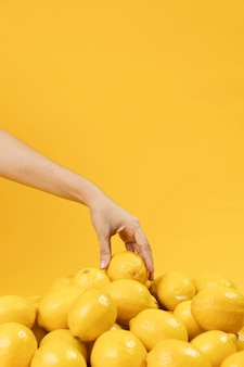 Mano tocando limones con espacio de copia