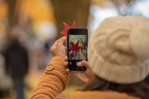 Mano turística que sostiene el teléfono móvil mientras que toma una fotografía de la hoja de arce en la estación de follaje