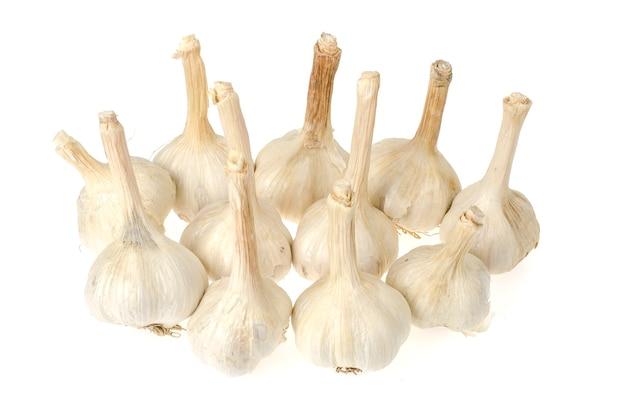 Manojo de cabezas de ajo secas aisladas sobre fondo blanco. foto de estudio