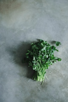 Manojo de cilantro sobre una mesa de concreto.