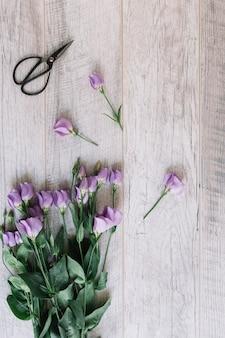 Manojo de flores de color púrpura y tijeras sobre fondo de madera