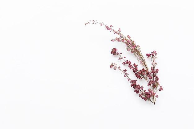 Manojo de flores silvestres