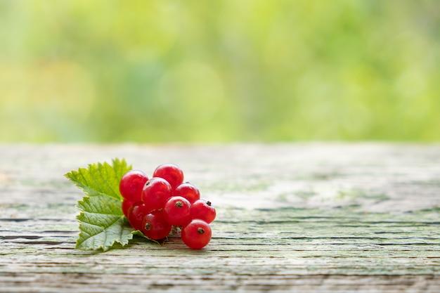 Manojo de grosellas rojas jugosas maduras crudas en un escritorio de madera en el jardín de primavera