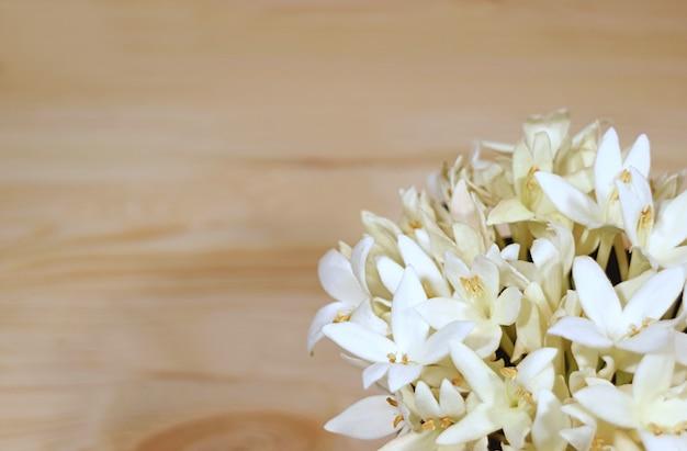 Manojo de hermosas flores blancas de millingtonia en una mesa de madera de color marrón claro
