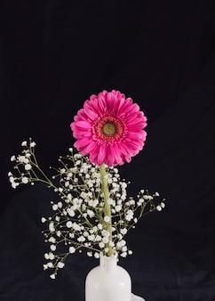 Manojo de ramita de flor fresca y floración rosa en botella
