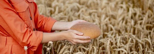 Manos de agricultor sosteniendo pan de salvado recién horneado de harina cruda saludable con espigas de trigo dorado